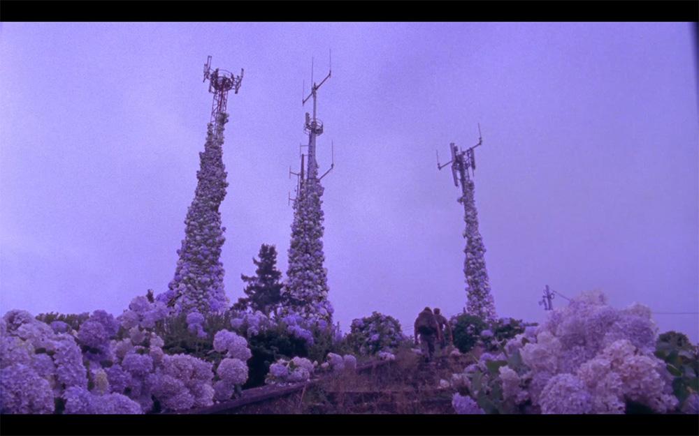 Still din Flores (2017).